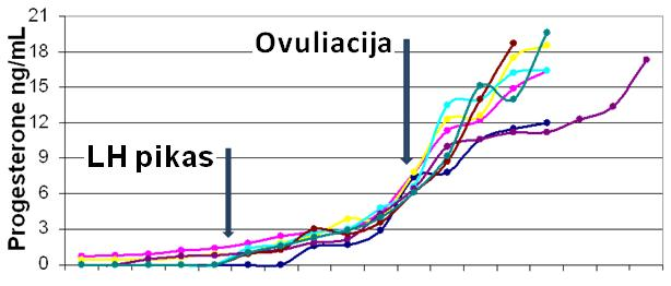ovuliacija